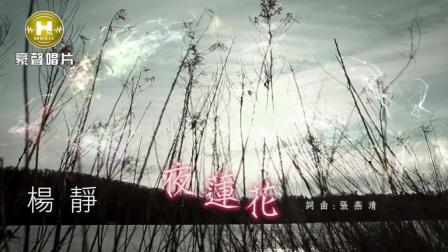 闽南歌《夜莲花》杨静