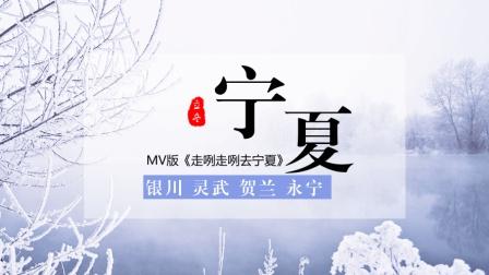 宁夏龙凌波: 再次感受MV版《走咧走咧去宁夏》, 还是我大宁夏好
