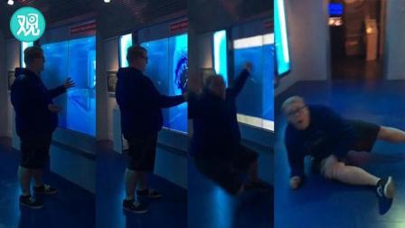 """触摸""""鲨鱼缸"""" 后果自负……一定要看到最后!"""