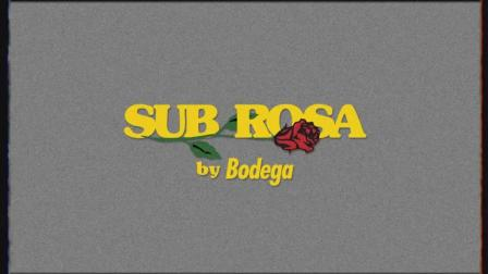 """Bodega x Vans Vault """"Sub Rosa"""" 联名宣传片"""