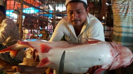 菜市场里, 三哥坐在大弯刀下杀大鱼, 游客们看了都替他捏把冷汗