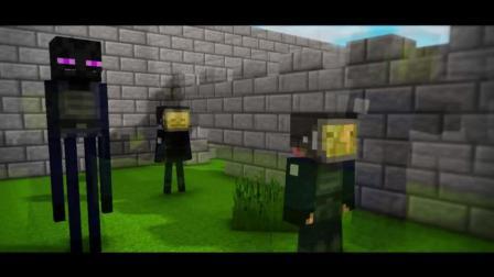 我的世界搞笑动画片, CS反恐精英比赛