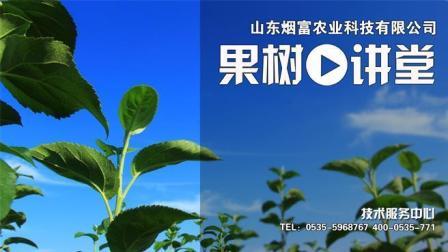 果树讲堂-苹果树根部病害管理技术