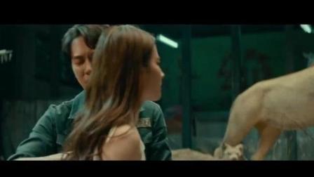 刘亦菲当着冯绍峰面自称狐狸精, 新电影二代妖精动感来袭, 希望神仙姐姐这次票房大卖