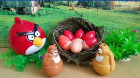 哆啦a梦喜欢玩愤怒的小鸟玩具, 宠物小精灵 巴啦啦小魔仙