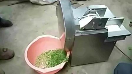 我爱发明承德切菜机视频 小型切菜机价格及图片 切丁机 切片机切菜机视频视频