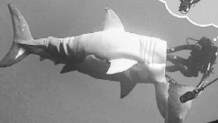 180秒看完, 《超级鲨大战机器鲨》, 人类文明到底能不能赢?