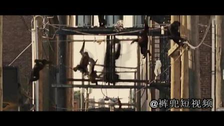 456大猩猩占领城市, 人类恐慌! 犹如世界末日!