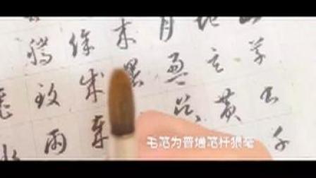 毛笔字视频 《草书千字文》