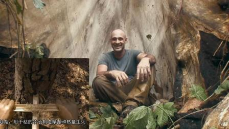 德哥的绝地求生: 德哥找到大树当庇护所, 徒手取火很熟练!