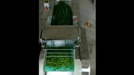 我爱发明邢台切菜机视频 小型切菜机价格及图片 切丁机 切片机切菜机视频