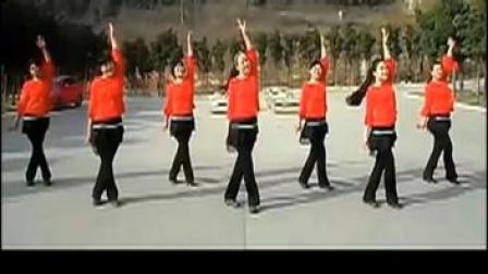 广场舞 又见山里红 附演示分解动作