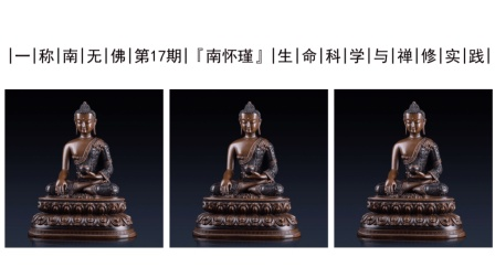 南怀瑾: 生命科学与禅修实践!