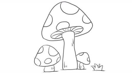 可爱的蘑菇幼儿亲子儿童简笔画 幼儿园学画画
