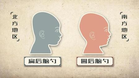 南方人的圆后脑勺,真的就比北方人的扁脑袋聪明吗?