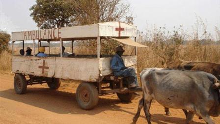 非洲为什么那么穷 真的仅仅是因为他们懒吗
