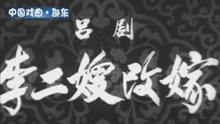 吕剧艺术片《李二嫂改嫁》郎咸芬 杨瑞卿