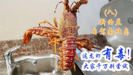 这龙虾有毒,大家千万别尝试,让我们来~新西兰自驾南北岛(八)