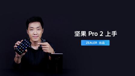 全面屏+Logo指纹识别 王自如上手坚果Pro 2