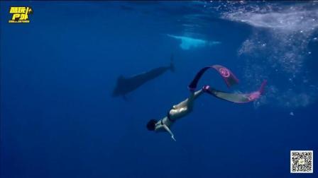 飞跃南北极去自由潜