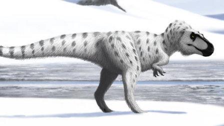 韩半岛的恐龙:特暴龙(下)