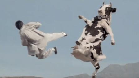 """网络疯传的""""人牛大战""""影片终于找到了, 恶搞功夫奶牛堪称经典!"""