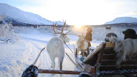 真希望一直这么走下去! 挪威驯鹿之旅如诗如画如痴如醉