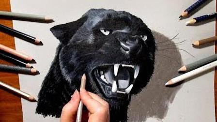 绘画日常: 领略过老虎的英姿, 同样敬畏黑豹的霸气