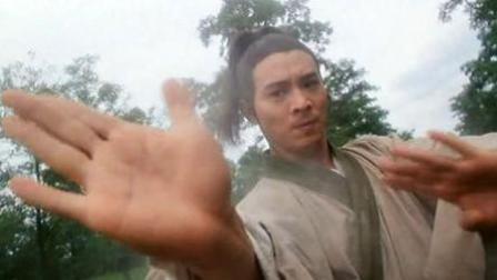 虽然是李连杰主演,但《太极张三丰》表达的是袁和平对于太极的理解