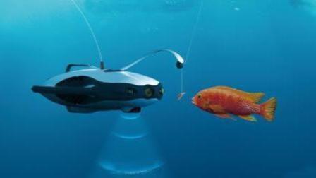 钓鱼再也不用风吹日晒了, 无人机让你躺在家里都能钓到鱼, 你想尝试吗