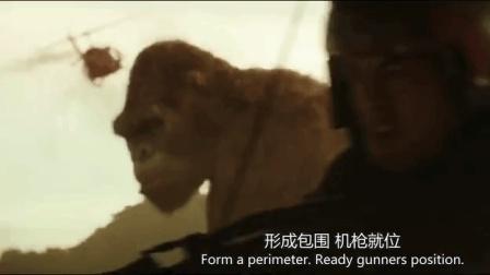 金刚: 骷髅岛_电影_高清1080P在线观看_腾讯视频