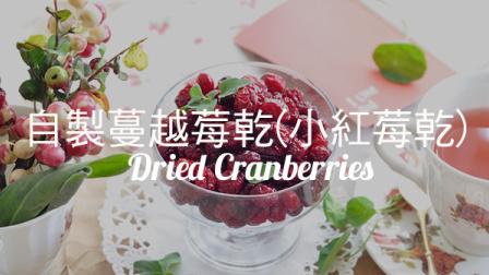 自製蔓越莓乾(小紅莓乾)【2017第 48 集】