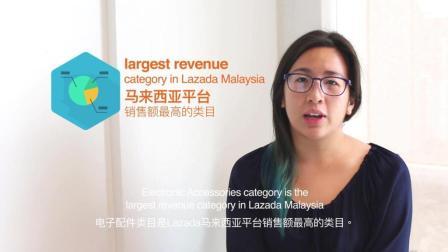 Lazada 类目透视系列:电子配件1/5(马来西亚)