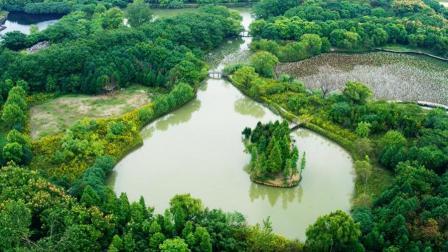 他在上海坐拥130000m²大园子, 放任不管, 这才叫奢侈!