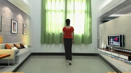 陕西省延安市富县中老年滑步舞教学