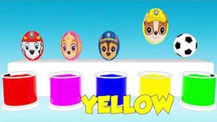 学习颜色! 3D小足球洗澡变汪汪队立大功