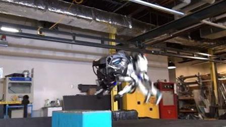 人形机器人学新招 后空翻完美落地