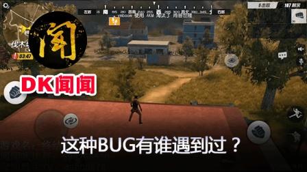 【DK闻闻★终结者2】: 有人遇到过这种BUG吗? 换个角度游戏也有惊喜!