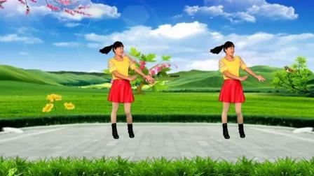 河北青青广场舞《家乡美》16步