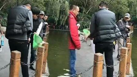 两男子人民公园内打捞观赏鱼带走