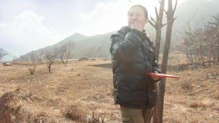 金陵遗址风水调查二: 金陵遗址的青龙方为何寸草不生?