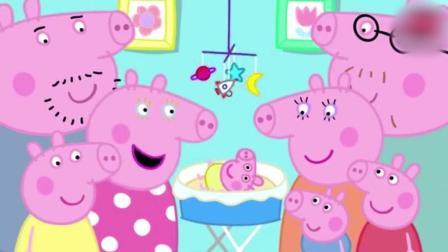 动画: 猪妈妈怀孕了, 乔治高兴的跳了起来