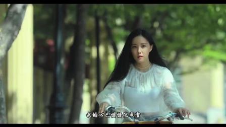 蒋雪儿-谁还在意我流下的泪