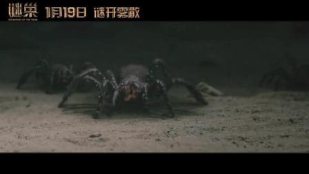 《谜巢》特效片段-魔窟蛛影