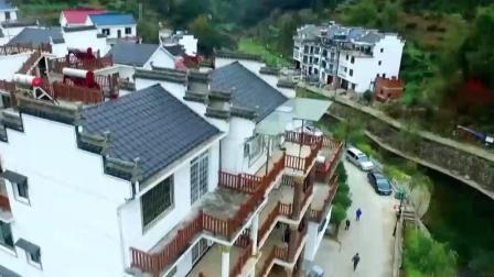 中国为什么能 第一季:精神面对面 走进衢州市开化县龙门村 08