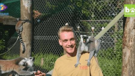 24岁的金发帅哥竟然是动物园园长