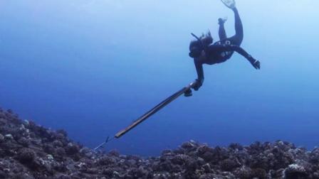 女版贝爷! 潜水女神可水下憋气5分钟 能用牙齿咬死章鱼