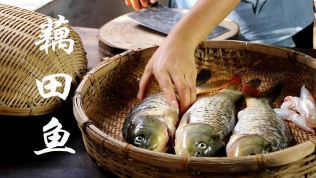 弟弟将鱼笼放藕田里, 一天后捕到几条藕田鱼, 加酸木瓜做成了云南特有的酸辣鱼