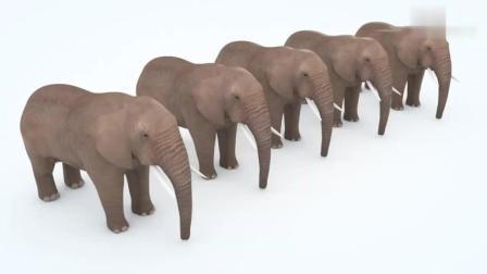 早教色彩启蒙英语: 大象吃培乐多彩泥染的冰淇淋变成彩象了