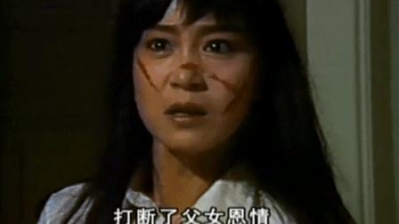 琼瑶经典电视剧《烟雨蒙蒙》主题曲, 唱不尽的前尘往事